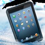 fre iPad Mini